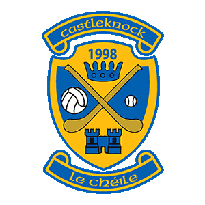 Image result for castleknock gaa