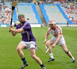 Fingal trio on Nicky Rackard Team of Championship