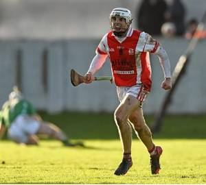 Wins for Cuala and O'Toole's in SHC