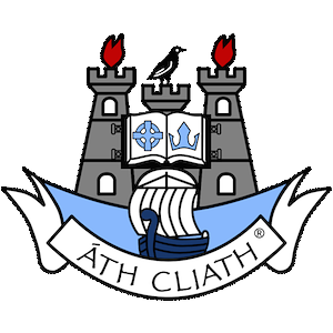 Image result for dublin gaa crest