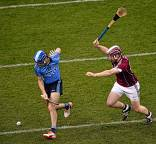 Dublin Panel Named for AIG Fenway Hurling Classic