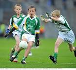 U11 Hurling & Football advance fixtures for the period late August to early November
