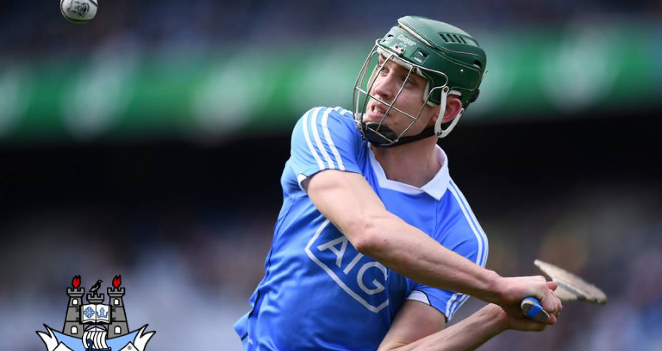 Friends of Dublin Hurling: Award winners
