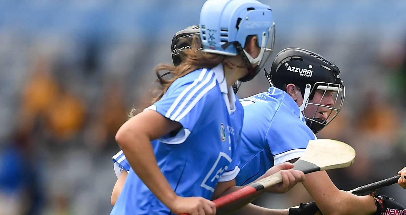 Camogie: Dubs fend off relegation with Carlow win