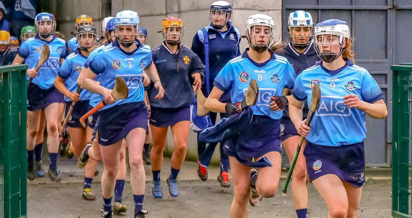 Senior camogie side lose out to Deise