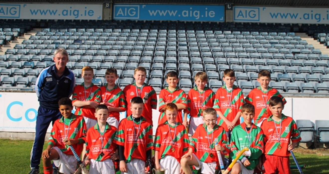 Dublin GAA Juvenile update Monday November 4th