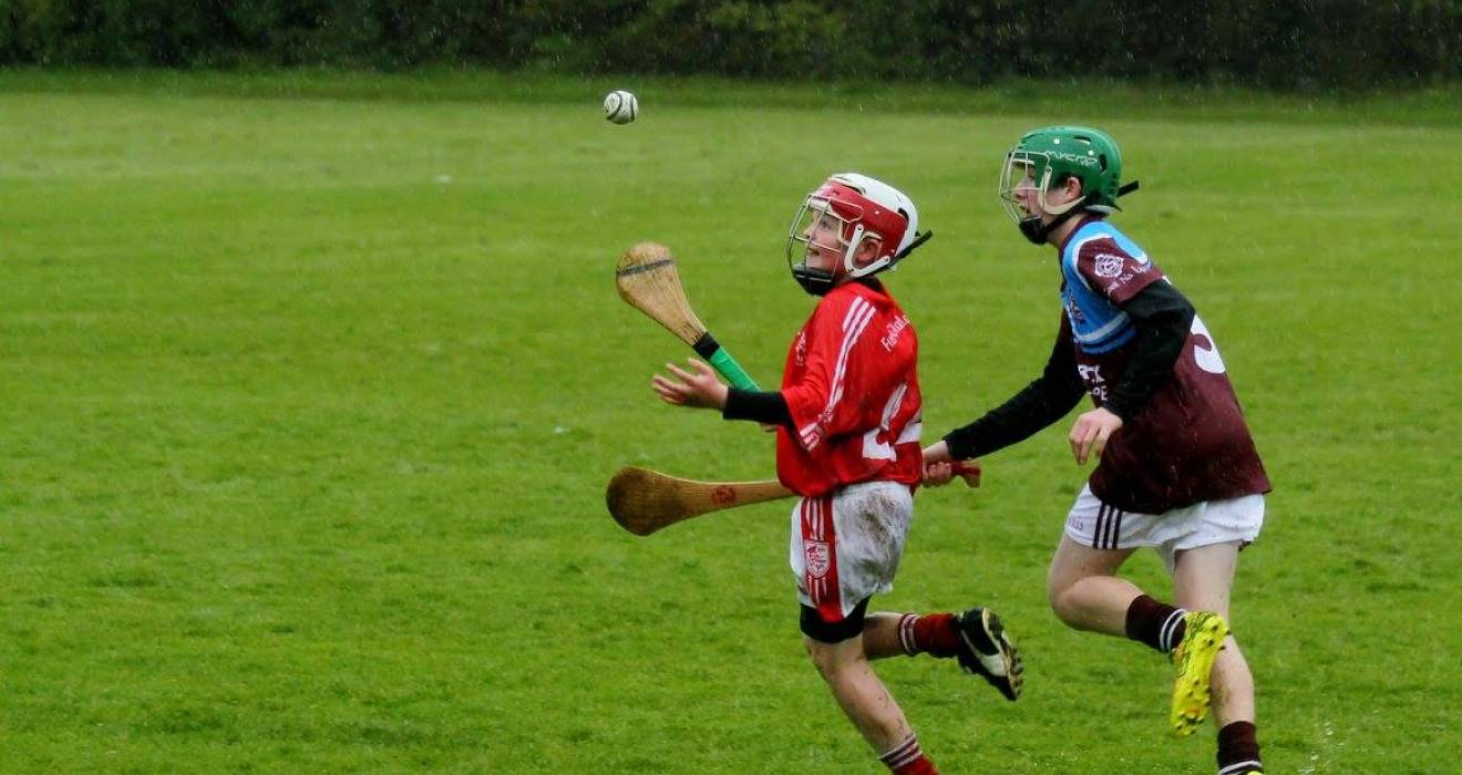 Dublin GAA Juvenile update Monday November 25th